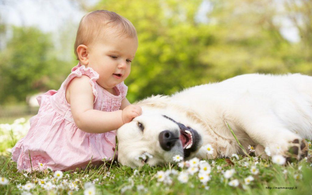 gossos i nens