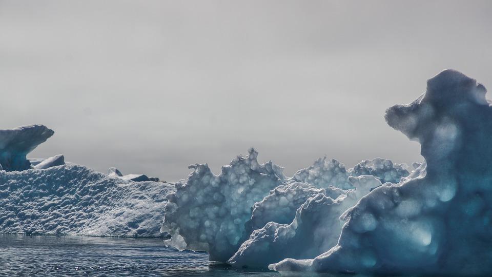 l'Àrtic