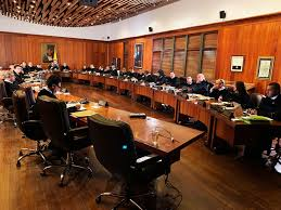 informe consell d'estat